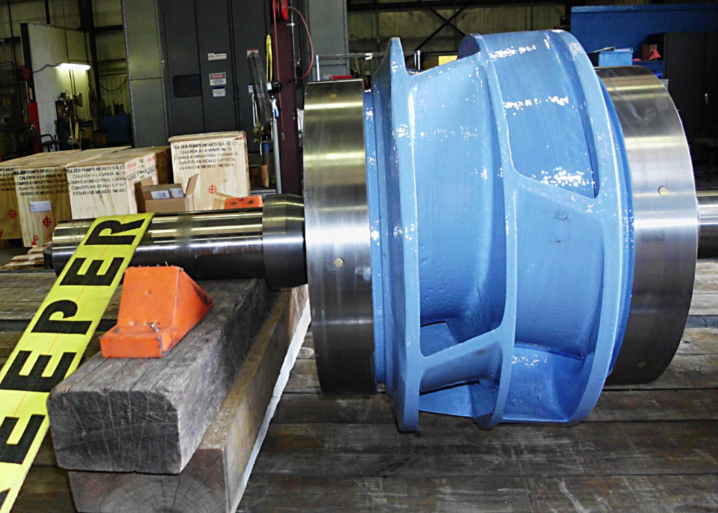 Sulzer corrosion protection in pumps